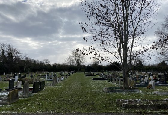 The Twenty Year Search for a Burial Ground