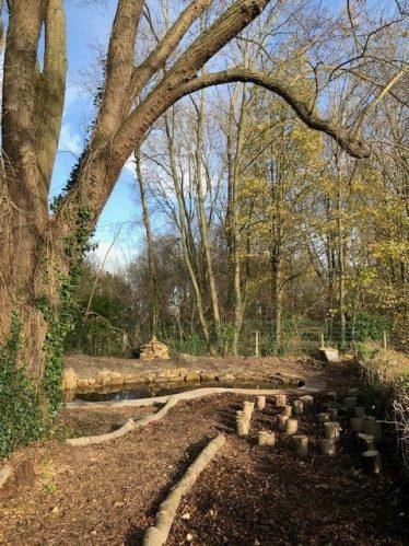 Meldreth Primary School's (not so) Secret Garden | Photograph supplied by Meldreth Primary School