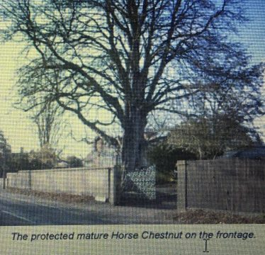 The History of The Homestead, 73 High Street