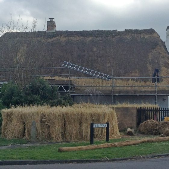 Thatching at 32 Whitecroft Road | Joan Gane 2016