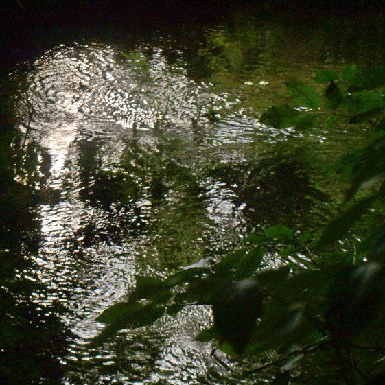 Contrasting light and shadow   Bruce Huett 2018