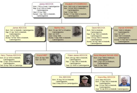 Adcock Family Tree
