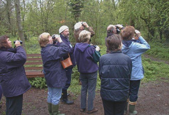 Community Events in Melwood: Birdwalks