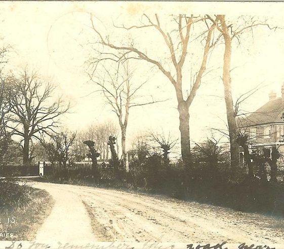 Belmington Close, c. 1905 | Robert H Clark postcard supplied by Brian Clarke