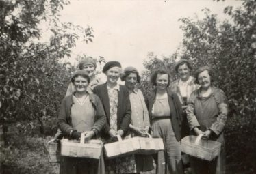 Fruit Pickers on Chiswick Farm in the 1940s.  From L to R: Sylvia Gipson, Mrs Plumb, Sarah Harper, Mrs Jacklin, Muriel Gipson, Gladys Clarke and Mrs Colbert | Terry Dash