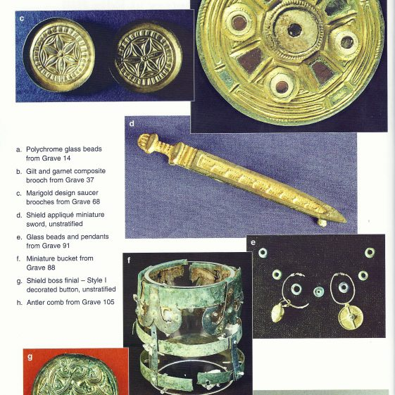 Finds from the Anglo Saxon Cemetery at Edix Hill | CBA Research Report 112, 1998