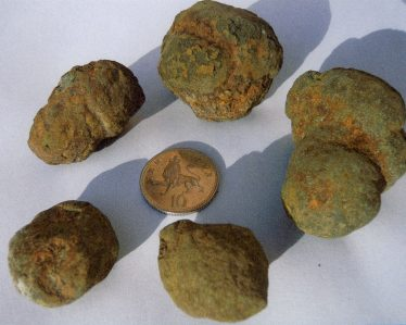 Coprolites approximately 170m years old | Cambridgeshire Collection