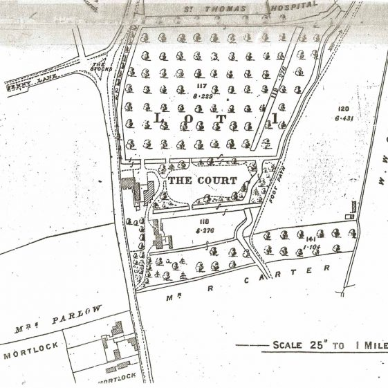 The land for sale in 1916