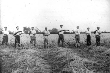 Mowers at Sheene Farm sharpening their scythes ready for work in 1903 | Cambridge Antiquarian Society Lantern Slide