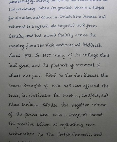 Dutch Elm Disease | Meldreth W.I.