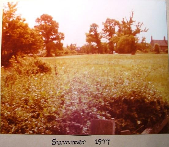 Dutch Elm Disease Summer 1977 | Meldreth W.I.