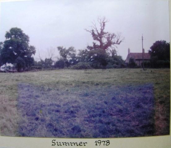 Dutch Elm Disease Summer 1978 | Meldreth W.I.