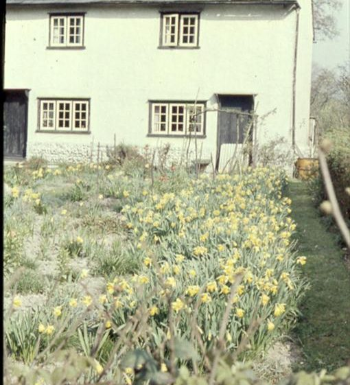 Daffodil Cottage, c. 1960 | Photograph supplied by Ann Handscombe