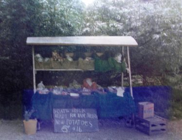 The Fieldgate stall in 1977 | Meldreth WI Scrapbook