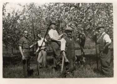 Fruit Workers on Chiswick Farm in the 1940s. Names L to R: Reg Chapman, Eddie Waldock, Peter Jacklin, William George Chamberlain and Ernie Dash | Photo courtesy of Terry Dash