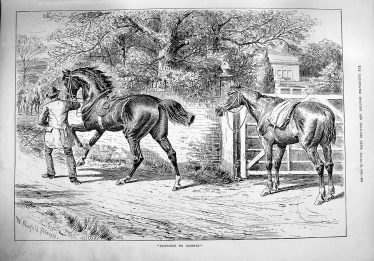 'Exchange no Robbery' - drawing of man stealing a horse | Illustrated Sporting and Dramatic News, London, 1890