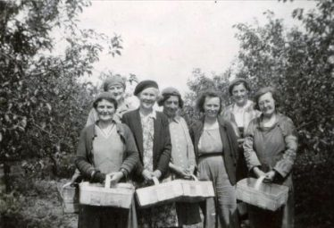 Gladys Clarke, second from right with other fruit pickers at Chiswick Farm, Chiswick End, Meldreth c. 1950 | Photo supplied by Terry Dash
