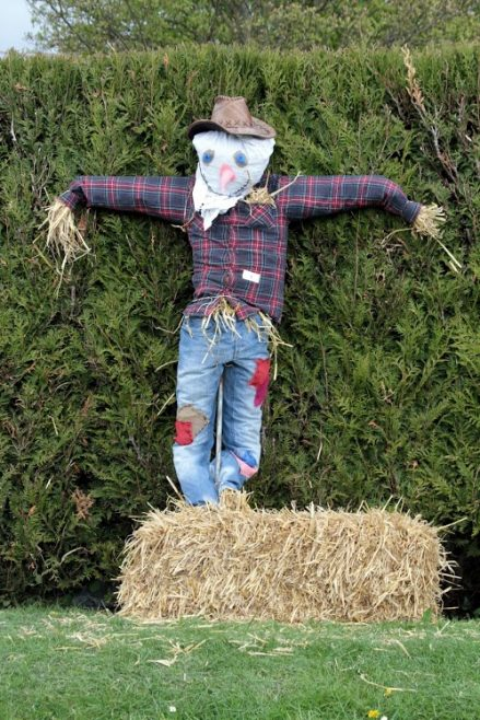 One of the entrants in the scarecrow competition | Photograph by Malcolm Woods