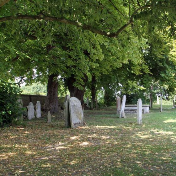Graves to the west of the Church, July 2014 | Photograph by Malcolm Woods