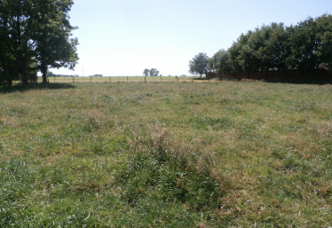 The field over which Jabez East's 39th Division is believed to have advanced during the Third Battle of Ypres | Ann Rogers
