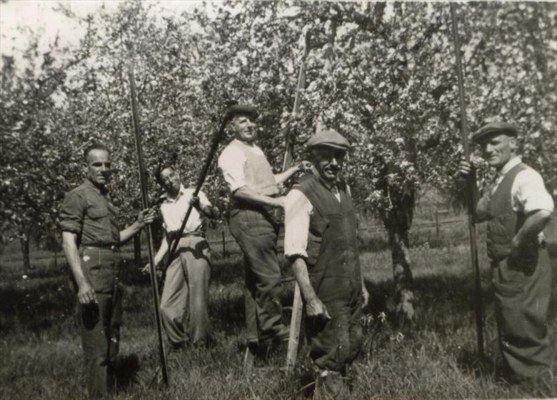 Fruit Pickers on Chiswick Farm in the late 1940s.  From L to R: Reg Chapman, Eddie Waldock, Peter Jacklin, William George Chamberlain and Ern Dash | Terry Dash
