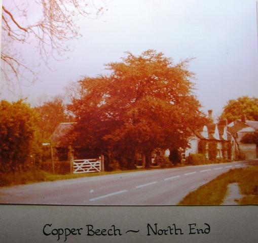 North End (1) | Meldreth W.I.