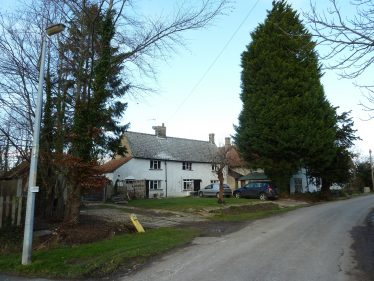 The huge conifer standing in front of Chiswick Farm Cottages in 2012 | Tim Gane