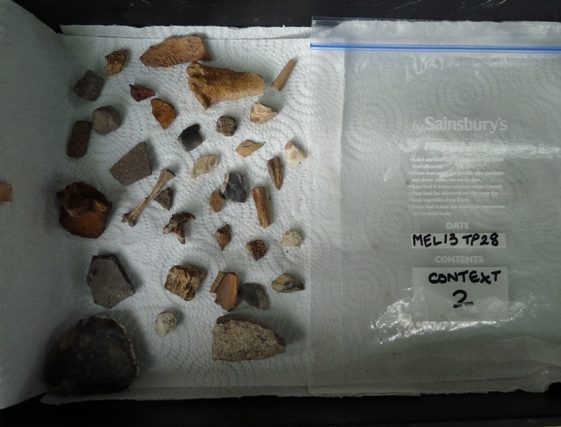 The finds from context 2 | Photo supplied by Roger and Lin Walbridge