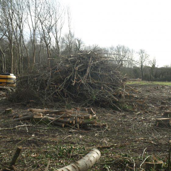 Cleared plantation near the River Mel | Bruce Huett 2019