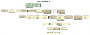 An extract from the Plumb Family Tree