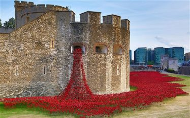 Poppies to commemorate the fallen in World War One, Tower of London, 2014 | Daily Telegraph Newspapers