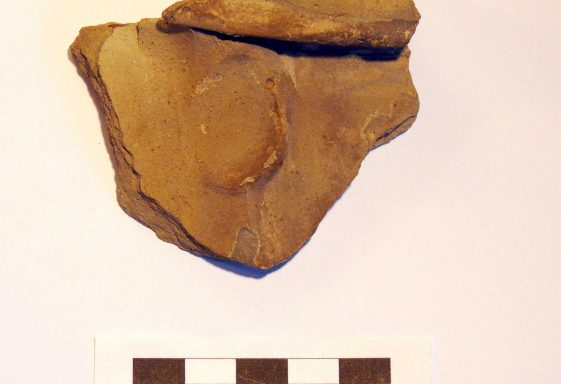 Pottery Pieces Found in the Moat Site of Vesey's Manor