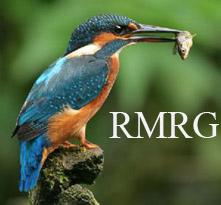 The River Mel Restoration Group