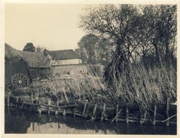 Sheene Farm Horse Pond in 1929 | Mike Pilkington