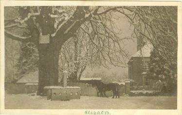 The stocks and whipping post in winter c. 1935.  The horse belonged to the Adcock family. | Photograph courtesy of Ann Handscombe
