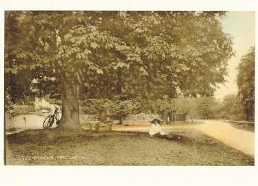 A lady sitting under the chestnut tree on Marvell's Green, c. 1920 | Postcard supplied by Ann Handscombe