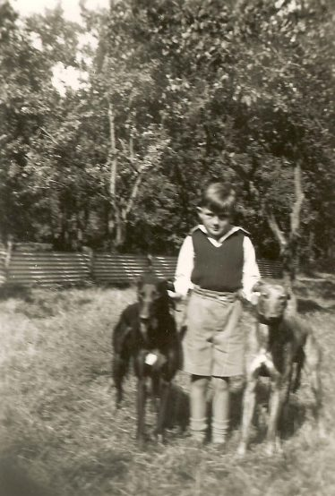 Terry, aged 7, pictured at Westacre with his two greyhounds | Photograph supplied by Terry Dash