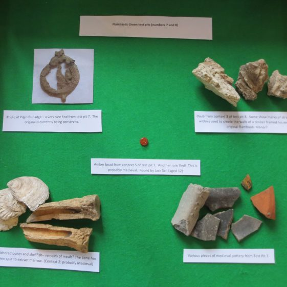 Finds from Test Pits 7 and 8 on Flambards Green | Photograph by Kathryn Betts